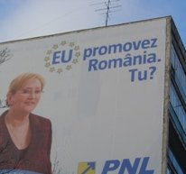European Elections in Romania : Another Fight for Power