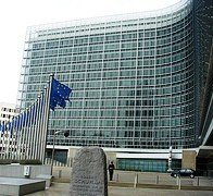 The European Commission: a mirror for national realities