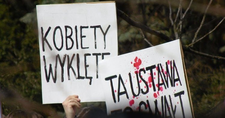 Parisian protests of Polish law: Interview with the Association for the Defence of Democracy in Poland