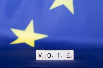 Should we allow EU citizens to vote in any member state's national elections ?