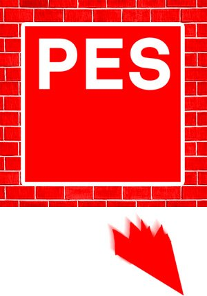 Who is the PES candidate?